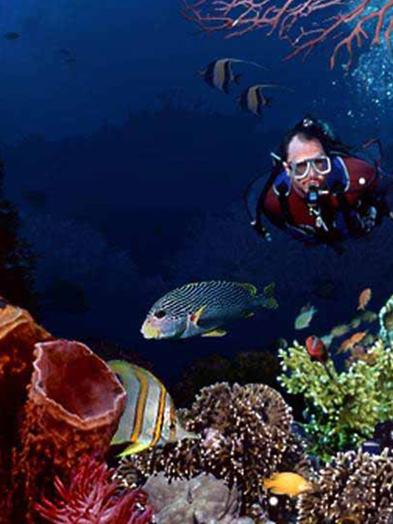 Marsa Alam is among the Best Snorkeling Locations Around The World!